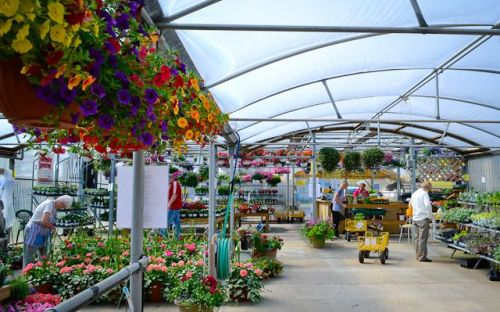 John Schuring Jr. Co. Greenhouses